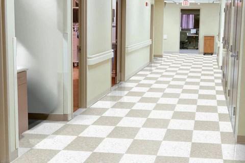 floor city tampa florida commercial