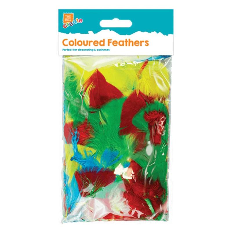 Coloured Craft Feathers Poundtoy