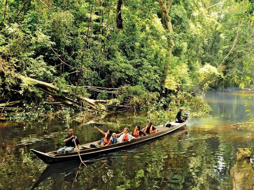 Taman Negara - Best Day Trips from Kuala Lumpur | Ummi Goes Where?