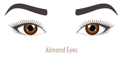Almond EyeShape - Mademoiselle Lash - what eye shape do I have