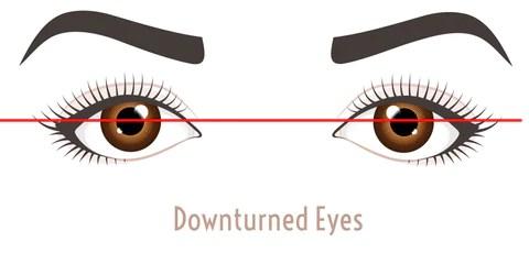 Downturn EyeShape - Mademoiselle Lash - what eye shape do I have