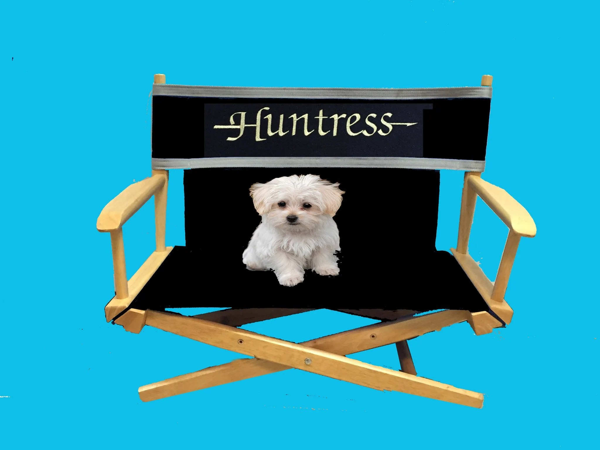 Personalized Directors Chair Pet Personalized Director S Chair