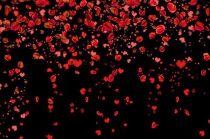 luxe falling rose petal