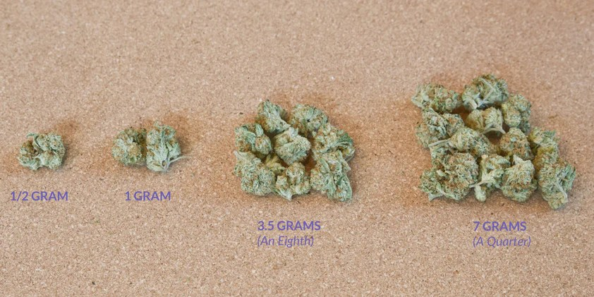 Different amounts of weed side by also what is an eighth quarter or ounce  visual guide  key to cannabis rh keytocannabis