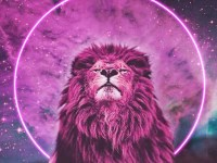 Moon Musings: How The Full Moon in Leo (Jan 31st, 2018 ...