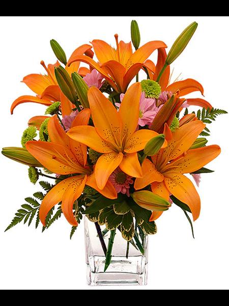 Orange Lily And Daisy Arrangement Next Day Flower