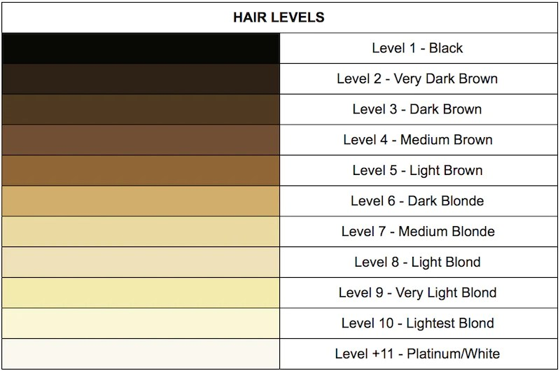 introduction hair levels