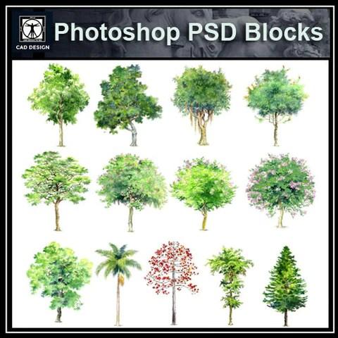 Tree PSD Blocks