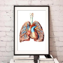 Lung Diagram Drawing 1994 Jeep Grand Cherokee Radio Wiring Geometrical Heart And Lungs Art Poster - Codex Anatomicus