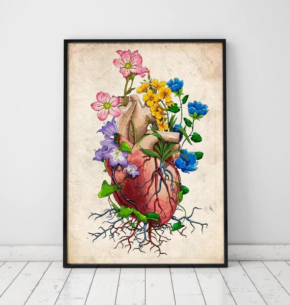 inside skull diagram guitar wiring diagrams 1 humbucker single coil real bellissimonyc com floral heart anatomy i old paper codex anatomicus human labeled