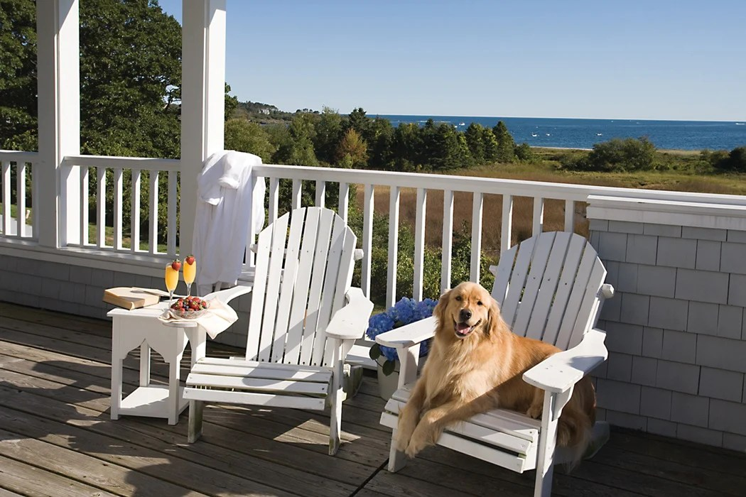 choose pet friendly patio furniture