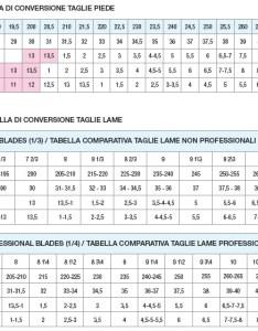Risport boot size chart also  skaters landing rh skaterslanding