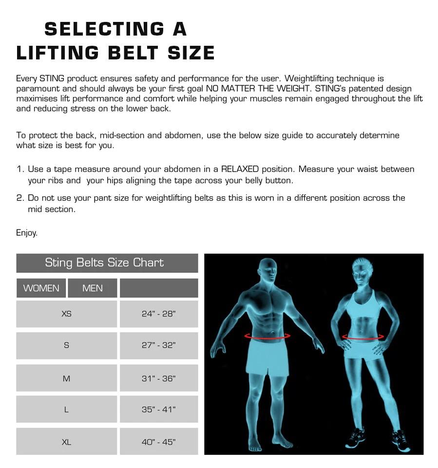 Sting lifting belt size chart also power pro straps sports australia rh stingsports