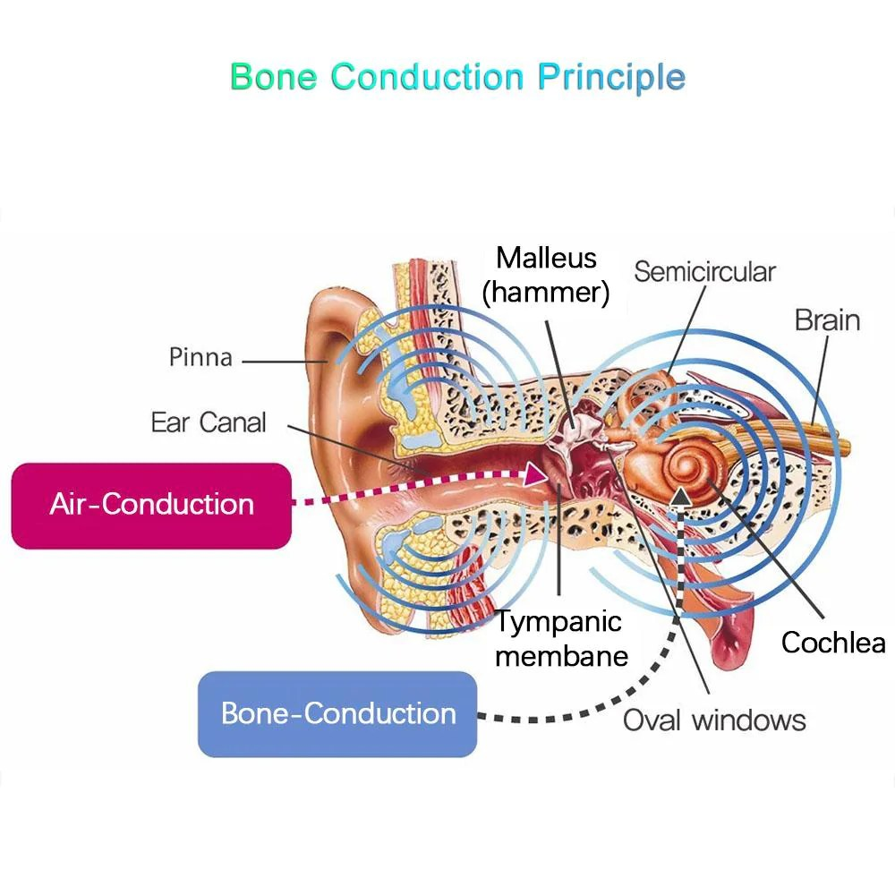 hight resolution of  for seniors bone conduction wireless headphones bluetooth v4 2 ipx4 bone conduction ear diagram
