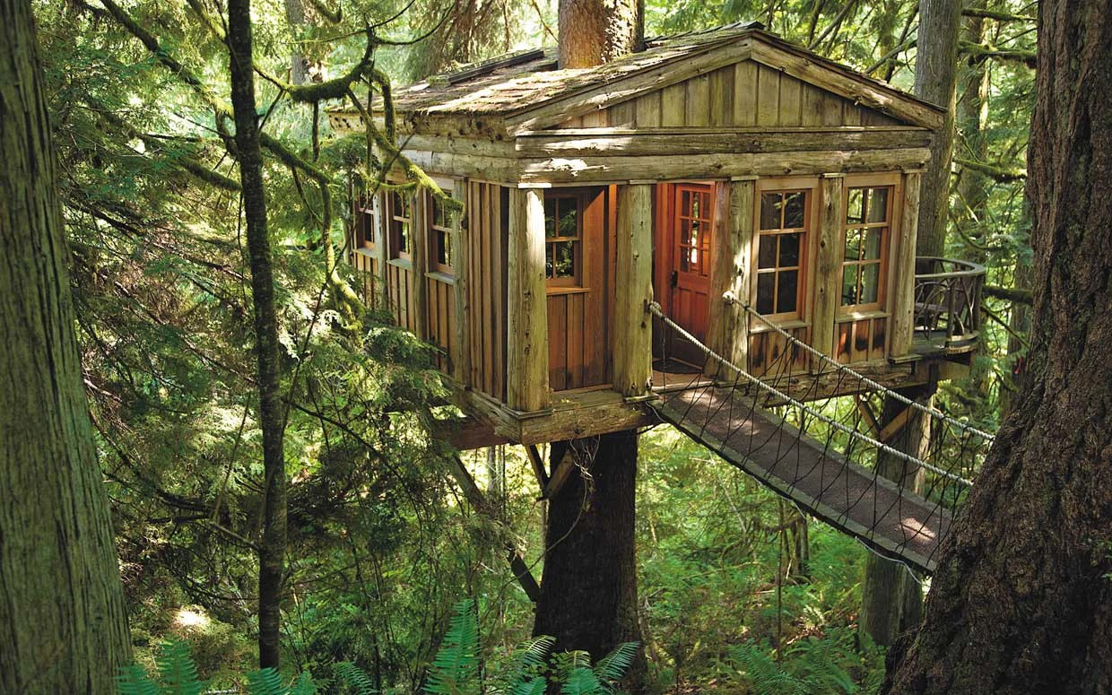 How To Build A Treehouse Basics First Mountain Home Building Products