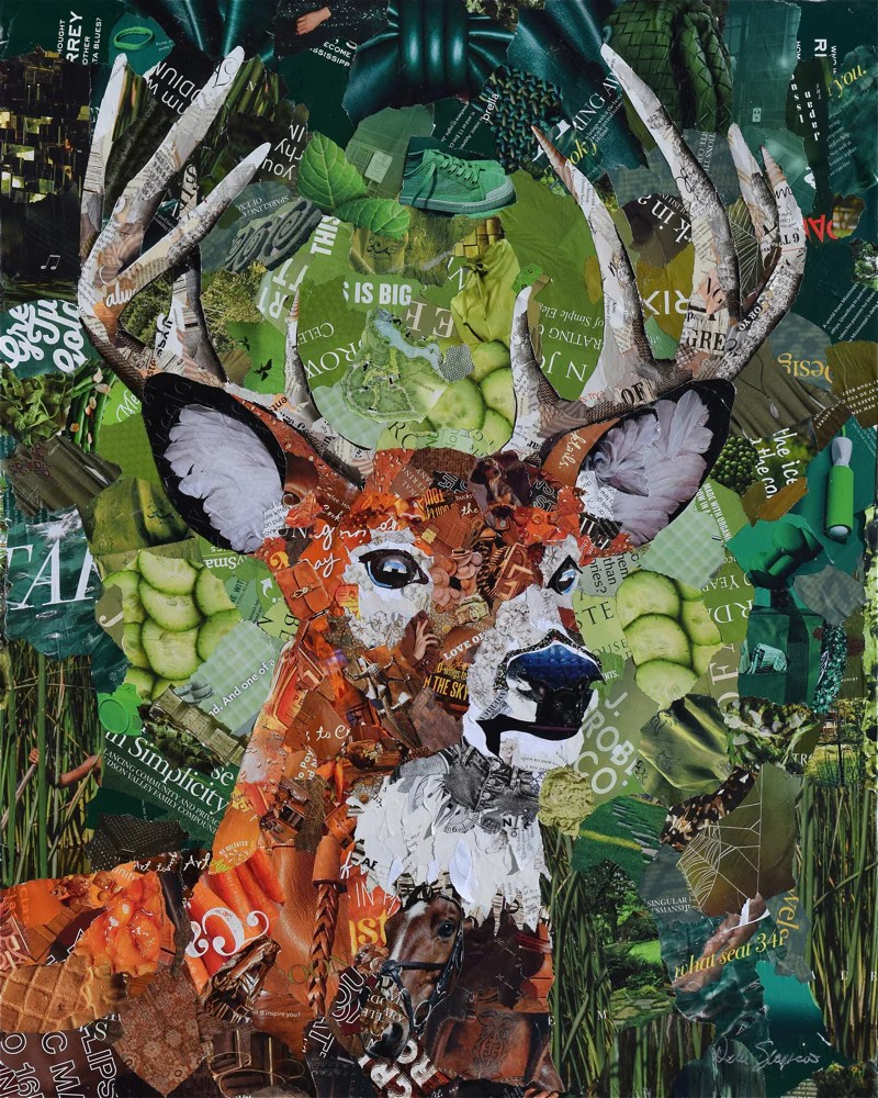 Animal Collage : animal, collage, White, Collage, Artist, Deborah, Shapiro