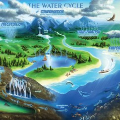 Diagram Of Learning Cycle Ep27 Flasher Wiring The Water Jigsaw Puzzle - Middle School Educational Activities – Standards In Puzzles