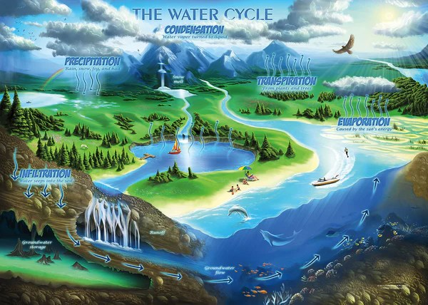 water cycle diagram with questions one way pull switch wiring the jigsaw puzzle - middle school educational activities – standards in puzzles