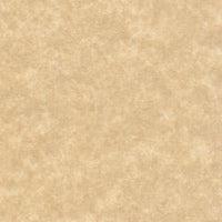 aged parchment paper 60