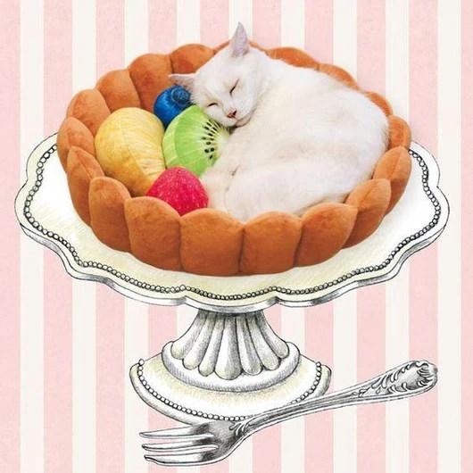 fruity tart pet bed