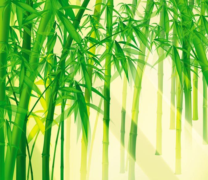 3d sunshine bamboo forest