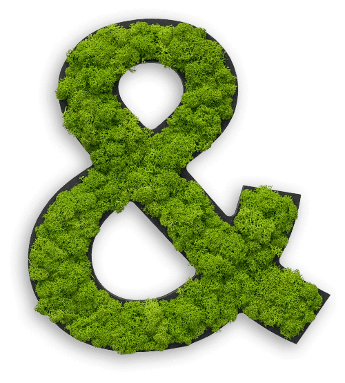 moss letters and symbols