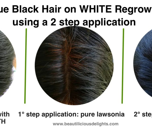 Dark Purple Hair Blue Black Hair Or Jet Black Hair Using Katam Or Ind Beautilicious Delights