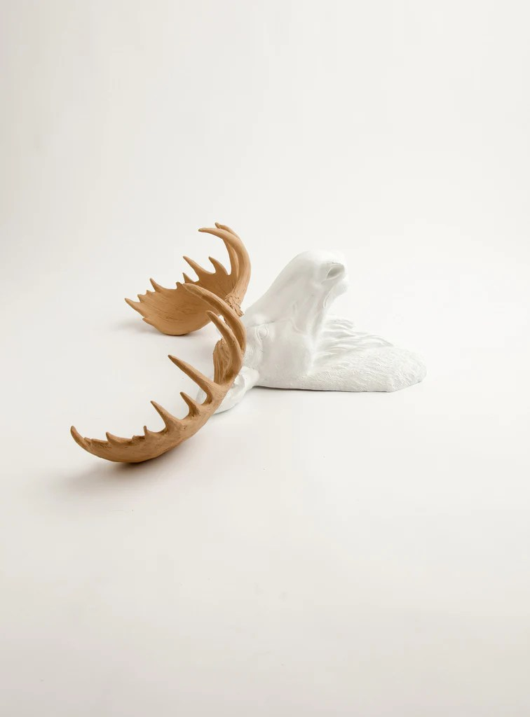 Ceramic Moose Head Mount
