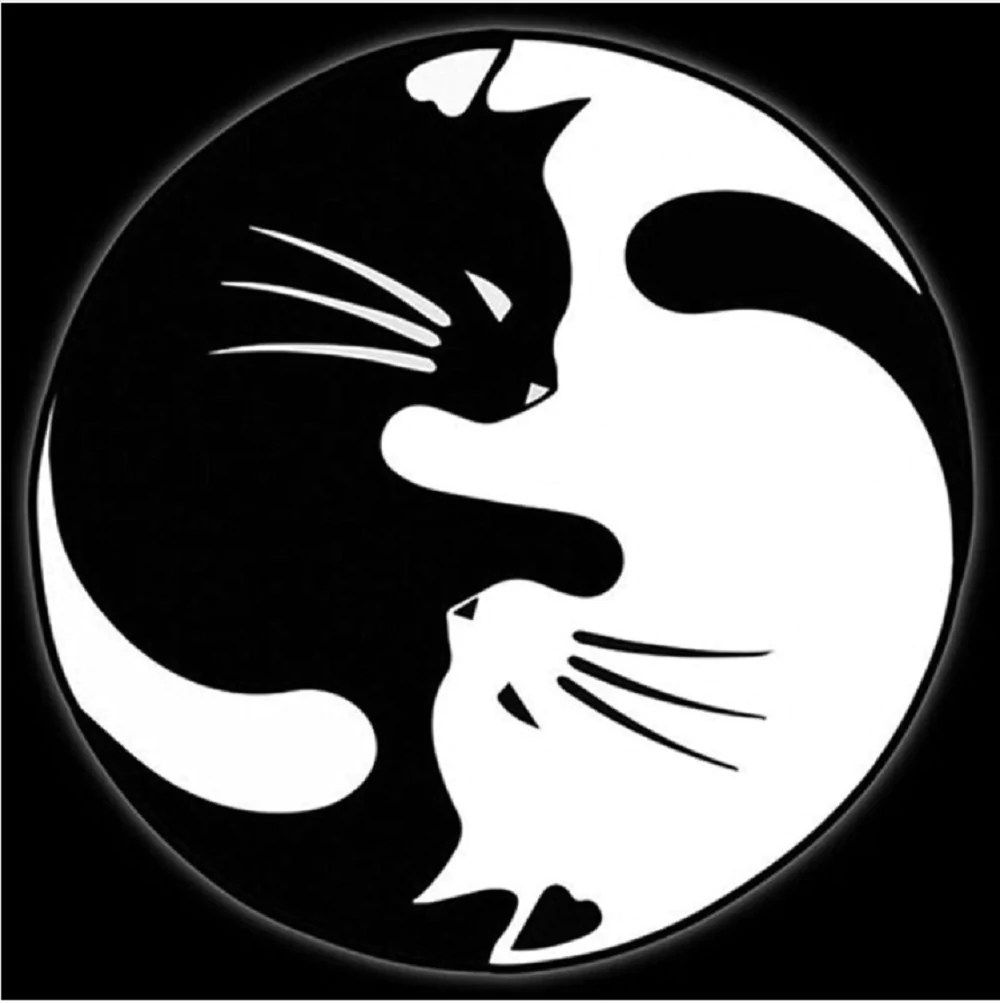 yin yang cat decal