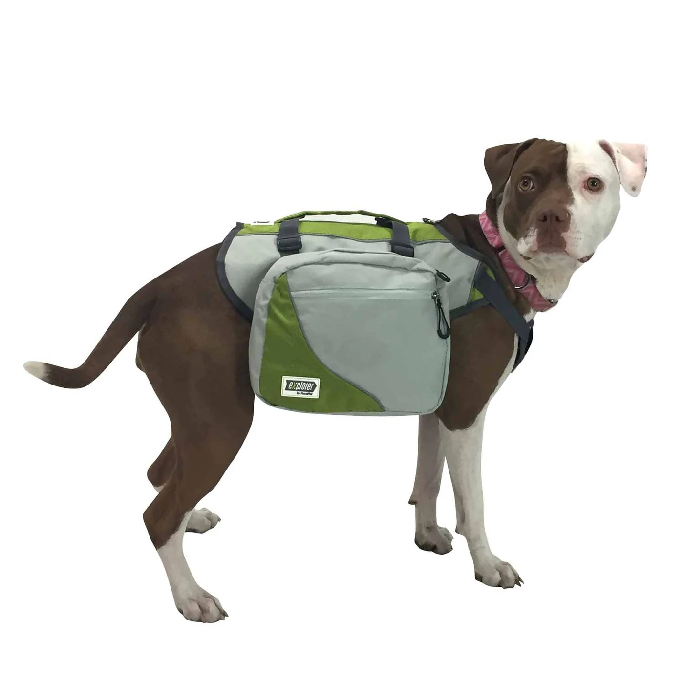 hight resolution of  side view of dog wearing dog harness backpack