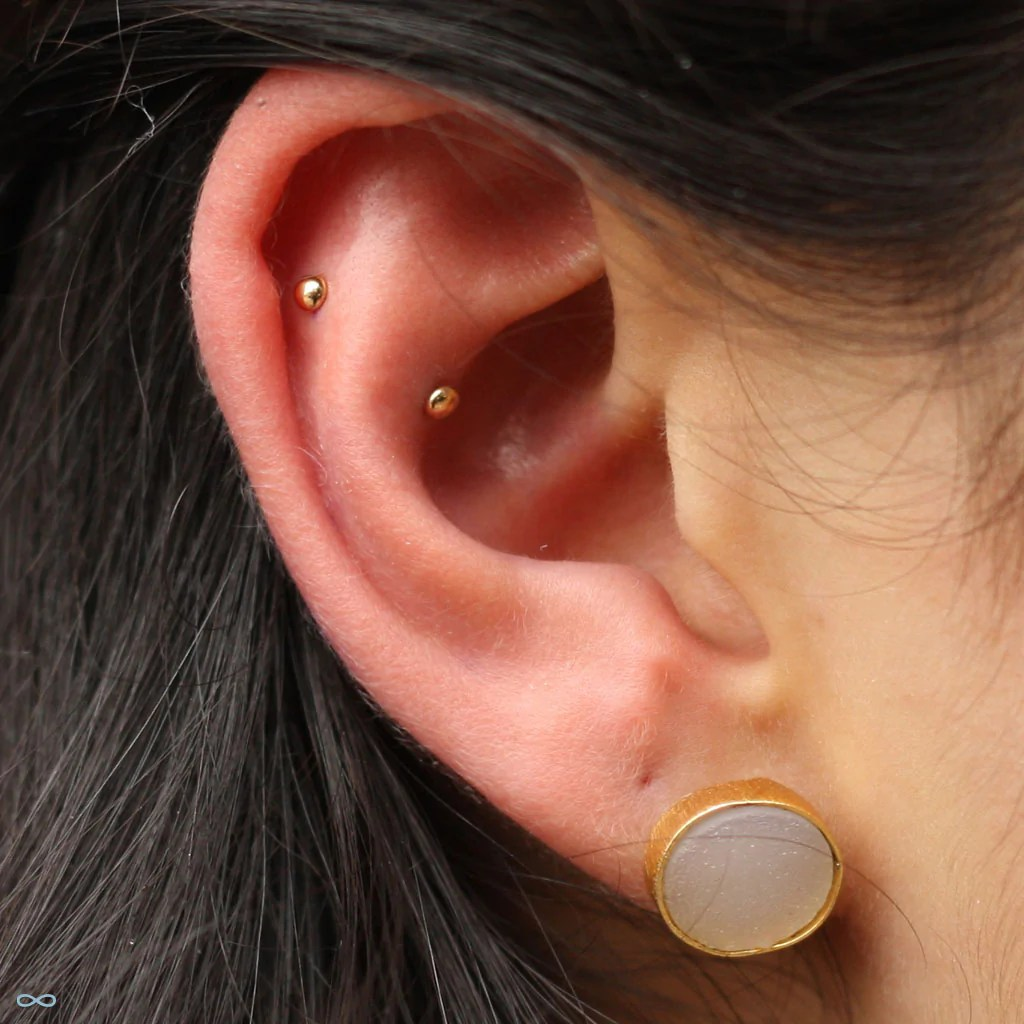 small resolution of outer helix and conch piercings by andru