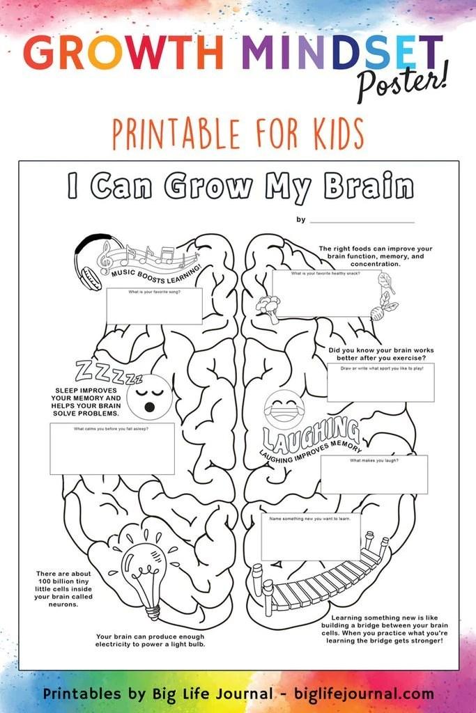 Human Brain Worksheets For Grade 4 - DIY Worksheet