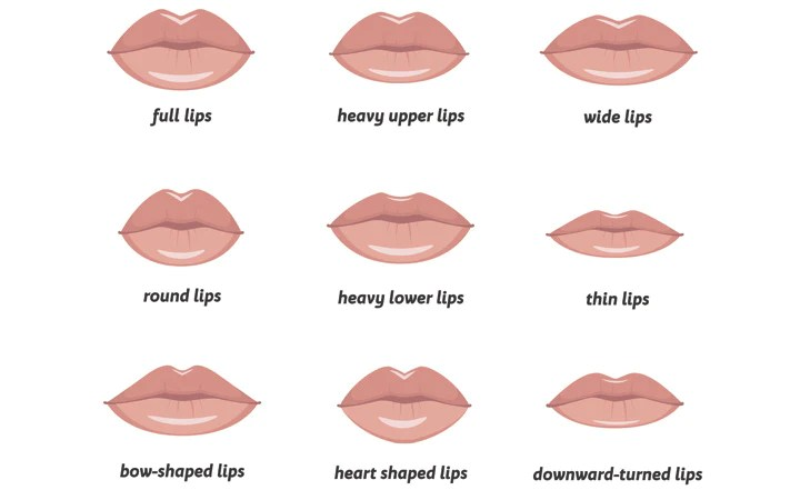 Different Types Of Lips + Ways To Make Them Look Flawless – SkinKraft
