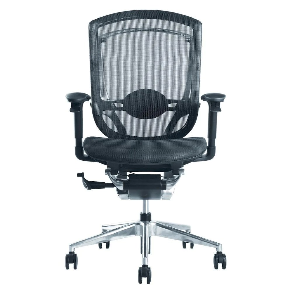 Ergonomic Chair Buy Ergo Fit Highly Adjustable Mesh Office Chair At Lifeix Design For Only 778 00