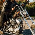 Custom Sportster Chopper Cheap Online