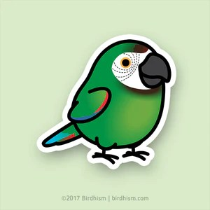 chubby severe macaw stickers