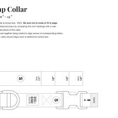 Dog Bone Diagram Whelen Light Bar Wiring Martingale Collar Boris And Horton