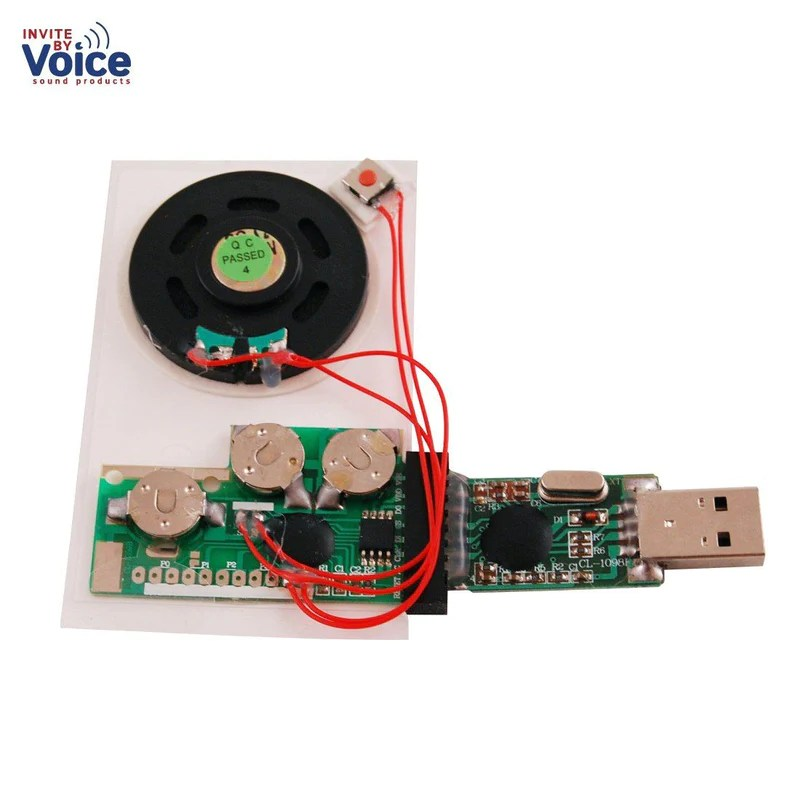 Push Button Activated Recordable Sound Chip For Hobbies
