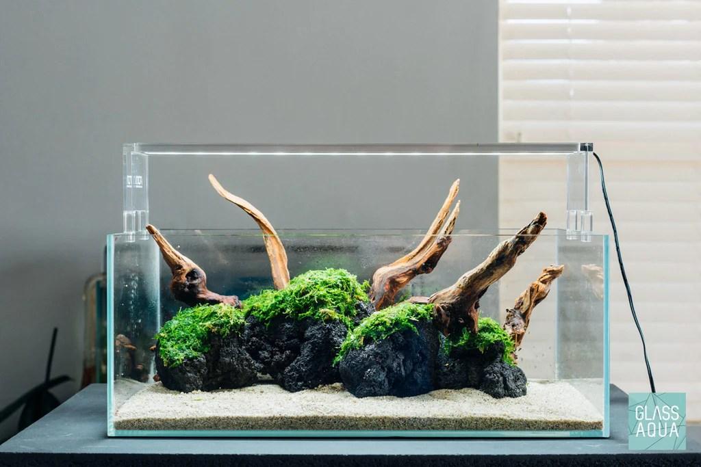 black lava rock aquarium hardscape