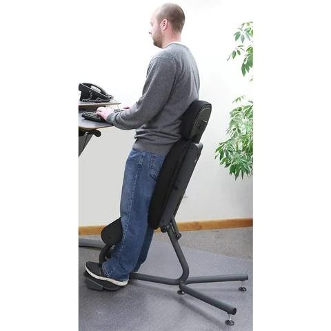 Health Postures 5050 Stance Move  SitStand Chair with