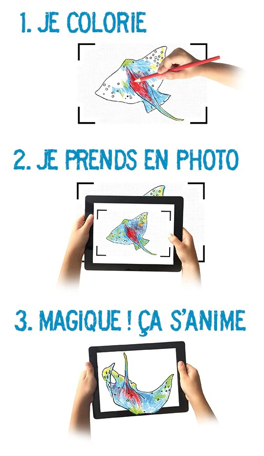 Le Cahier De Dessin Animé : cahier, dessin, animé, Cahier, Dessin, Animé, Picorette