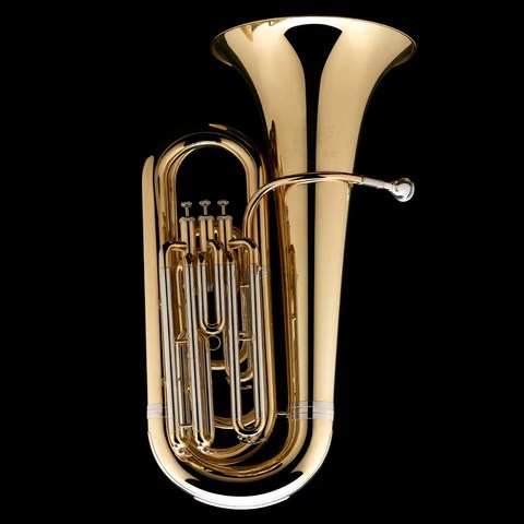 Brass instruments in order of pitch  Blog  Wessex Tubas