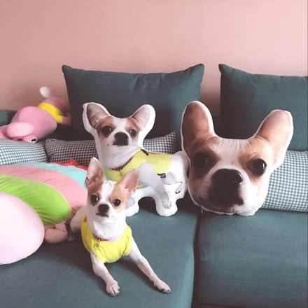 my pet cushion custom pet pillow