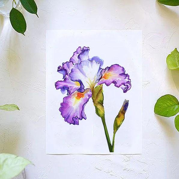 iris watercolor kit