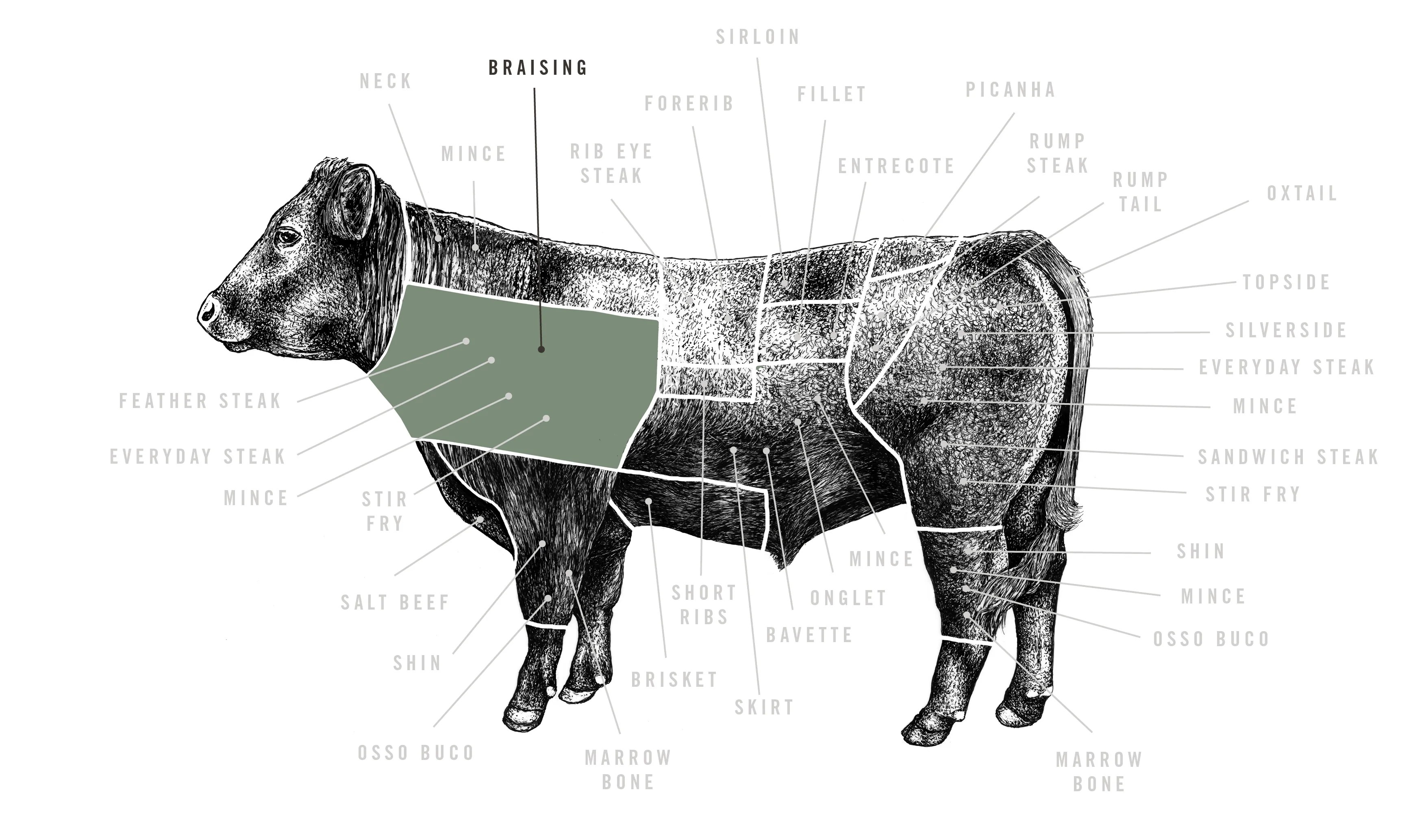 hight resolution of red ruby braising beef meat cuts diagram