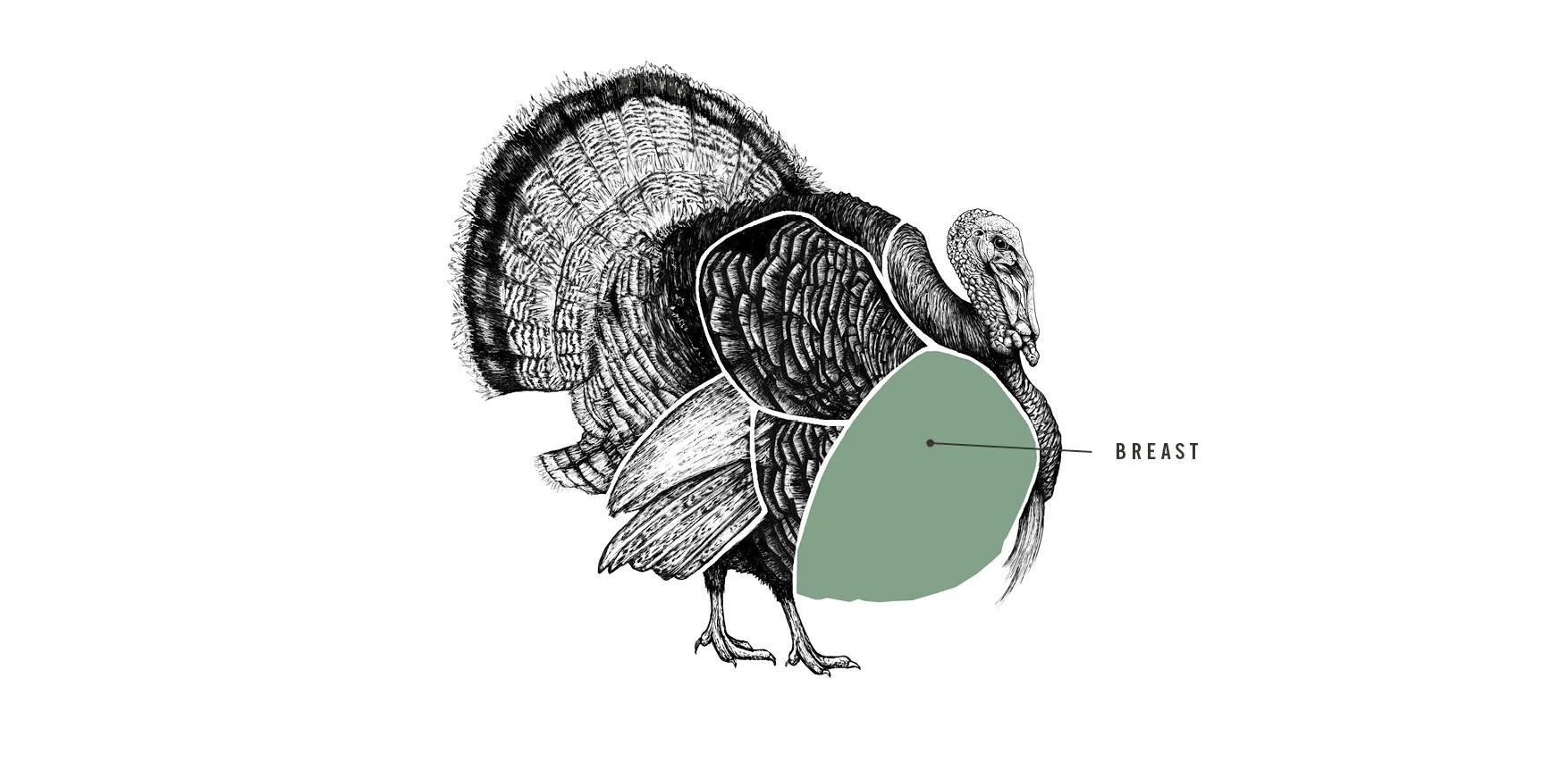 free range bronze turkey breast meat cuts diagram [ 1754 x 862 Pixel ]
