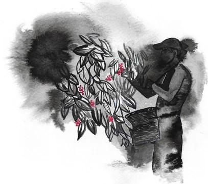 farmer_illustration