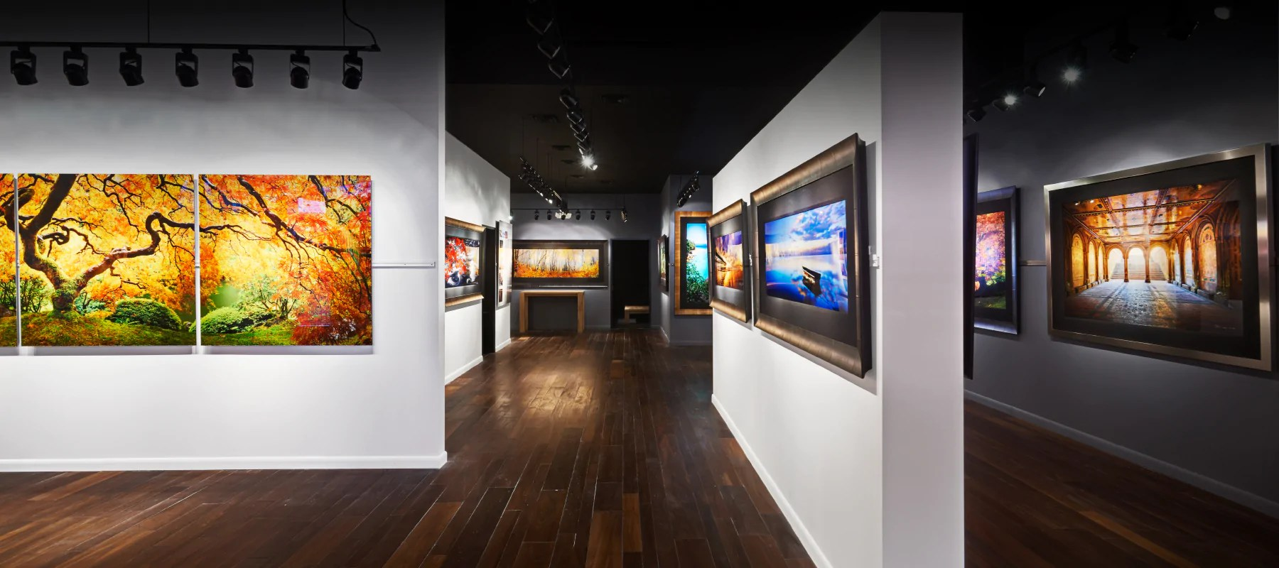 Peter Lik Miami Beach