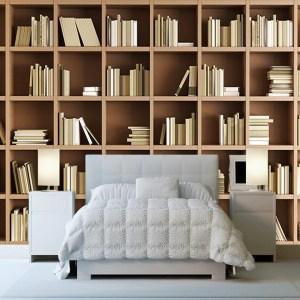 library bookcase mural study bookshelf living bedroom murals painting