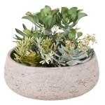 Modern Succulent Arrangement